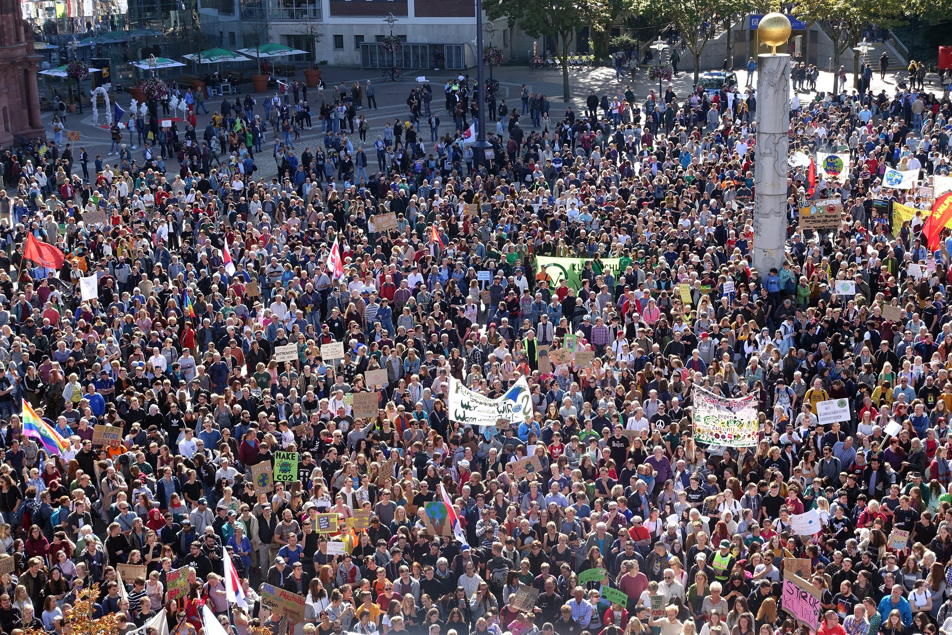 Proteste mediu - sursa: Pixabay